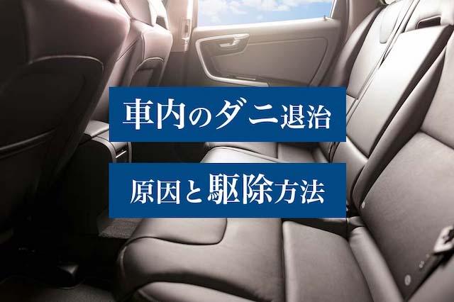 車内に潜むダニの発生原因と退治方法