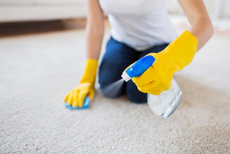 カーペットやじゅうたんの臭いを取る方法