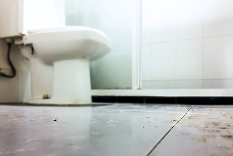 トイレの床はカビやホコリがたまりやすい