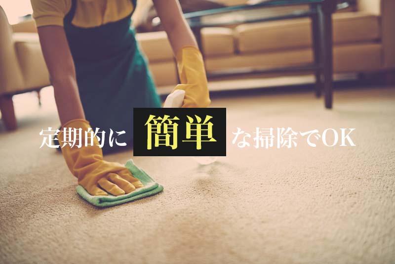 定期的にじゅうたんを簡単に拭く掃除だけもOK