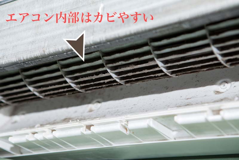 エアコン内部にはカビが繁殖しやすい