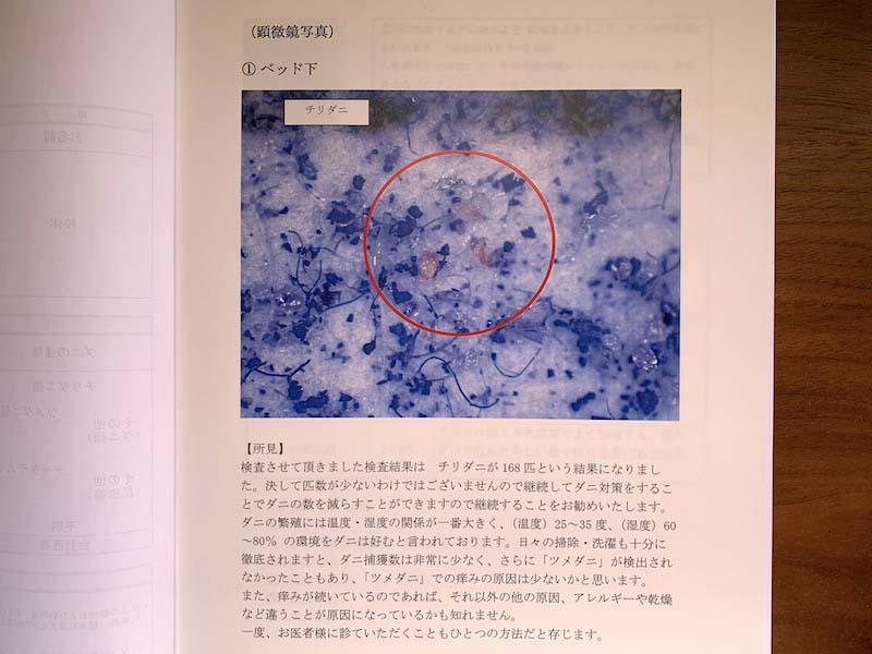 ダニ捕りロボの検証結果2